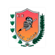 CF San Jorge